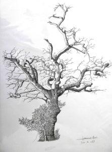 Prix d'art graphique - art Colomiers expo - Gérard-Henri Lamouroux